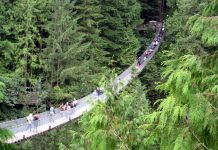 Capilano Suspension Bridge in North Vancouver, British Columbia; Photo by ©Pacific Walkers