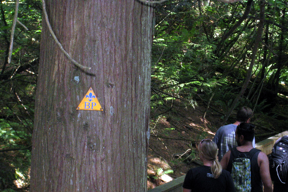 HP mark at Baden Powell Trail, Deep Cove, North Vancouver, British Columbia; Photo by ©Pacific Walkers