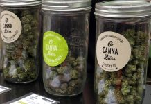 Cannabis sold at 420 Vancouver, BC; Photo by ©the Pacific Post/ File photo