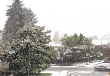 Vancouver snowing again; Photo by ©Pacific Walkers